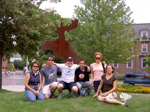 news_moose2008